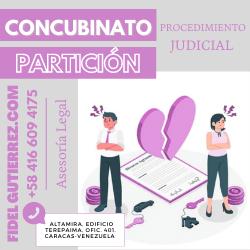 concubinato procedimiento judicial cpc-8