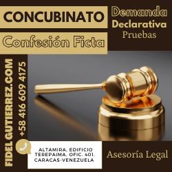 demanda declarativa concubinato confesion ficta carga probatoria8